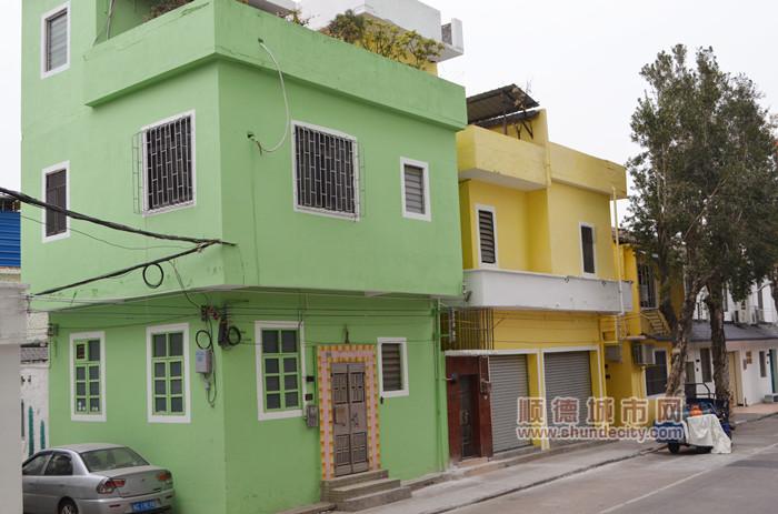 3紧紧相依的黄色与绿色。.jpg